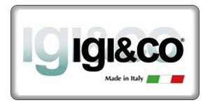 IGI&GO